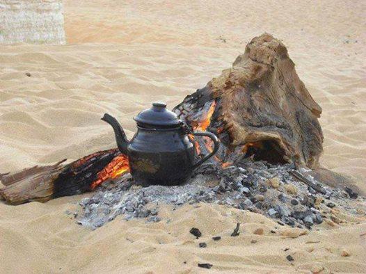 desert tour, sand-boarding, camels, horses from $525 in one week Slide 5