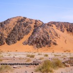 Dream-Tour-Sinai