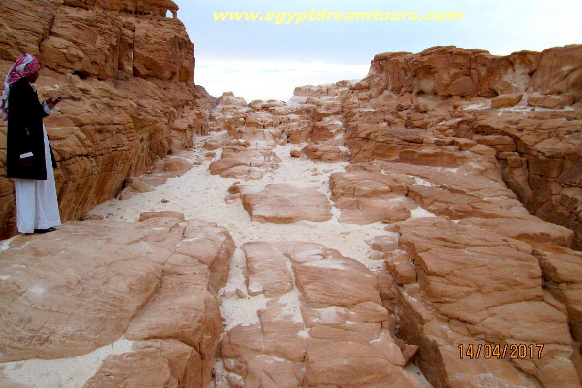Dream-Tour-Sinai Slide 22