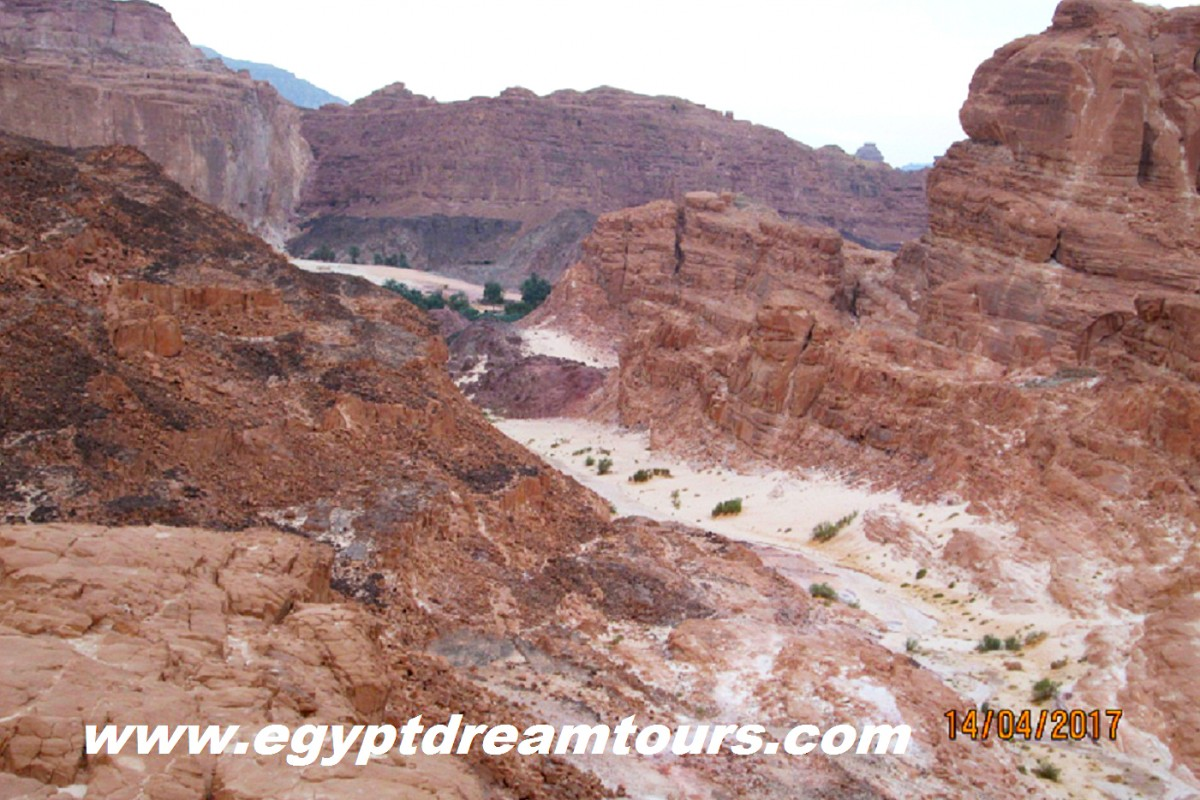 Dream-Tour-Sinai Slide 23