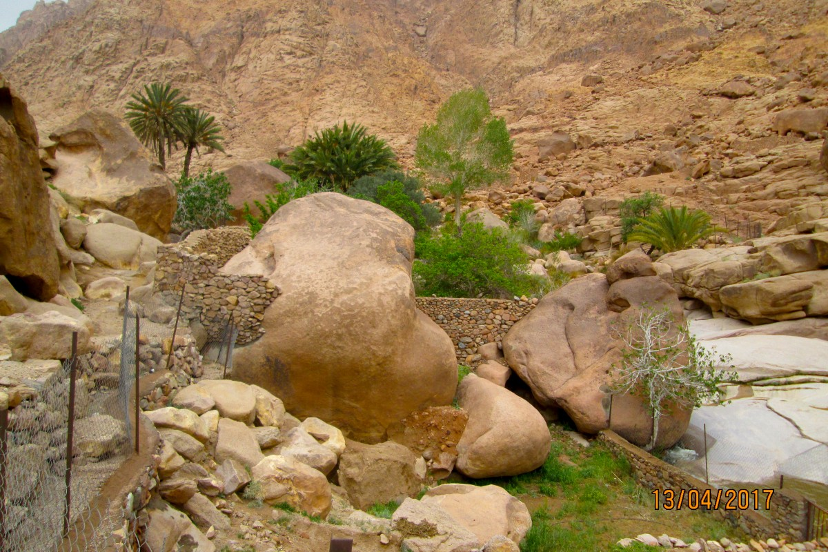Dream-Tour-Sinai Slide 3