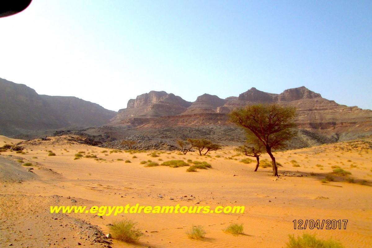 Dream-Tour-Sinai Slide 5