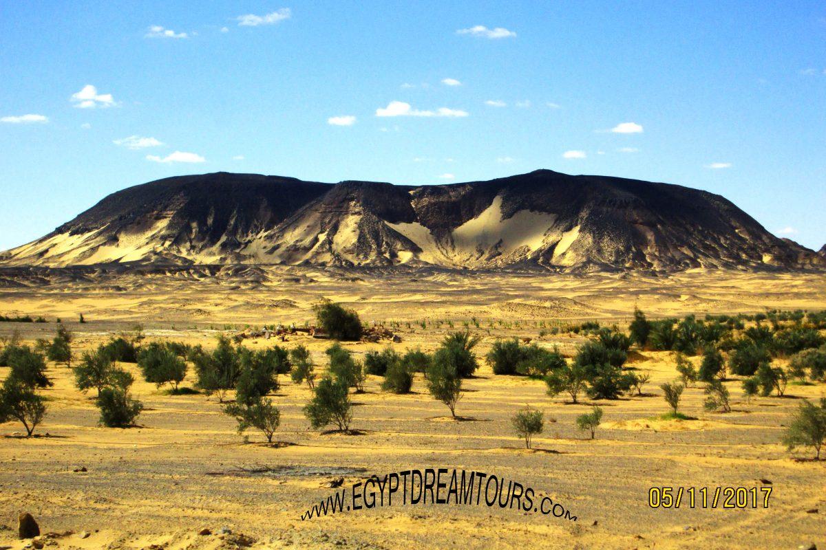 The black desert Slide 1